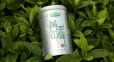Чай зеленый Хуаншань Маофэн Lepinlecha 65 г 2