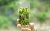 Чай зеленый Тайпин Хоукуй Lepinlecha 65 г 11